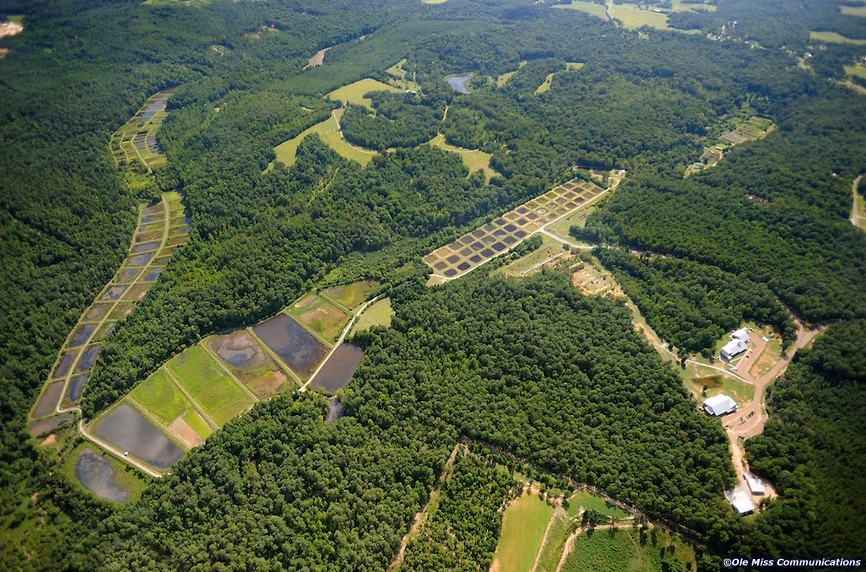 Aerial Field Station